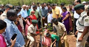 NATURE LOVERS FROM CITY CELEBRATE WORLD ENVIRONMENT DAY